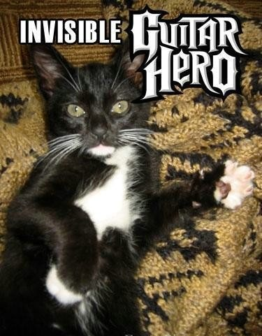 Invisible Guitar Hero Funny Cat Picture