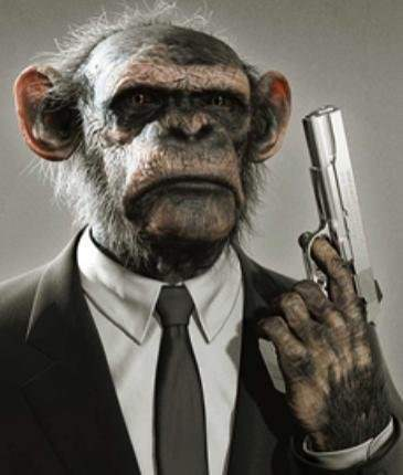Funny Monkey with Gun Picture