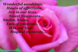 Wonderful Sunshines Hours of Affection
