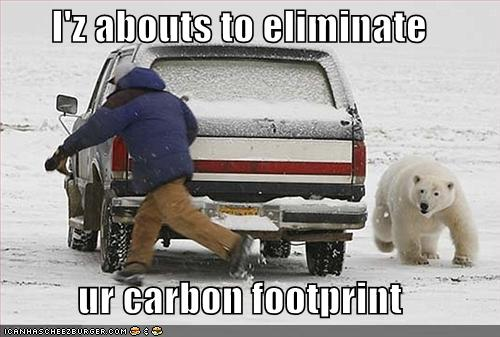 I is Abouts to Eliminate Your Carbon Footprint Funny Bear Picture