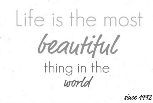 Life is the Most Beautiful Thing in the World