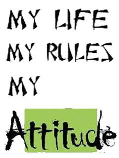 My Life My Rules Attitude