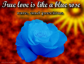 True Love is Like a Blue Rose
