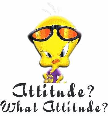 Attitude ? What Attitude ?