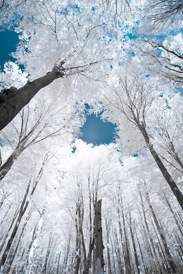 Blue skies.. Funny Amazing Photo
