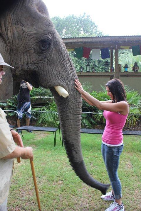 Funny Women with Elephant Image