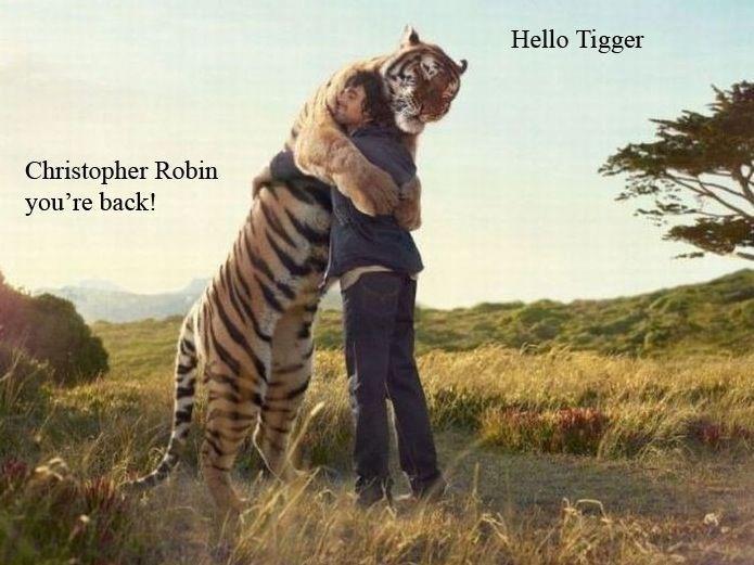Christopher Robin…reunited at last Funny Lion Image