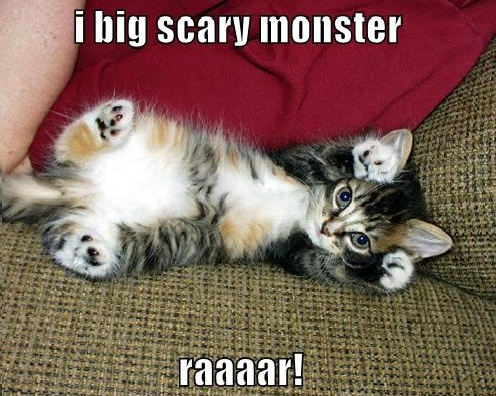 I Big Scary Monester Funny Cat Picture