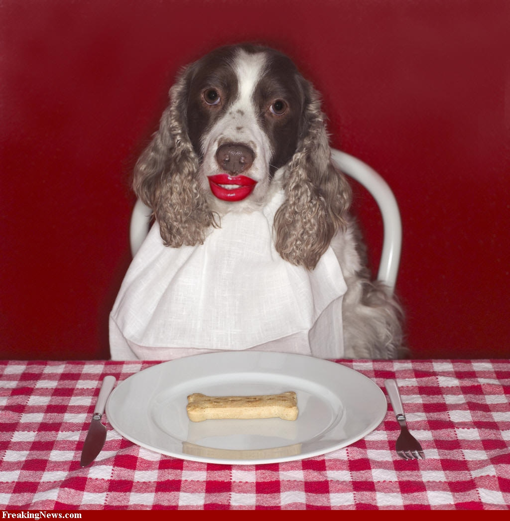 Funny Hungry Dog Lips Picture