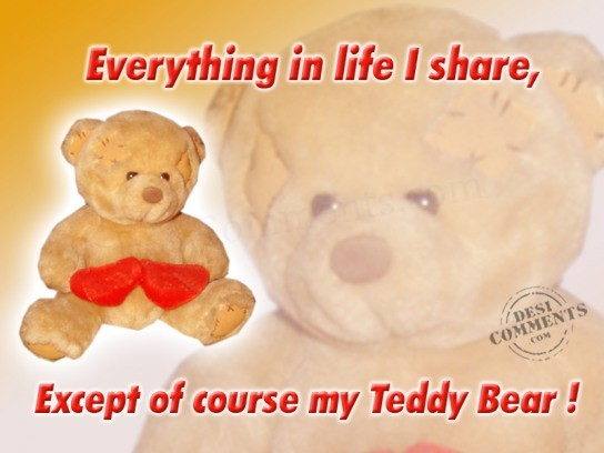 Everything in Life I Share Except of Course My Teddy Bear !