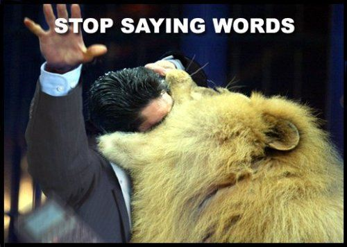 Stop  Saying Words Funny Lion Picture