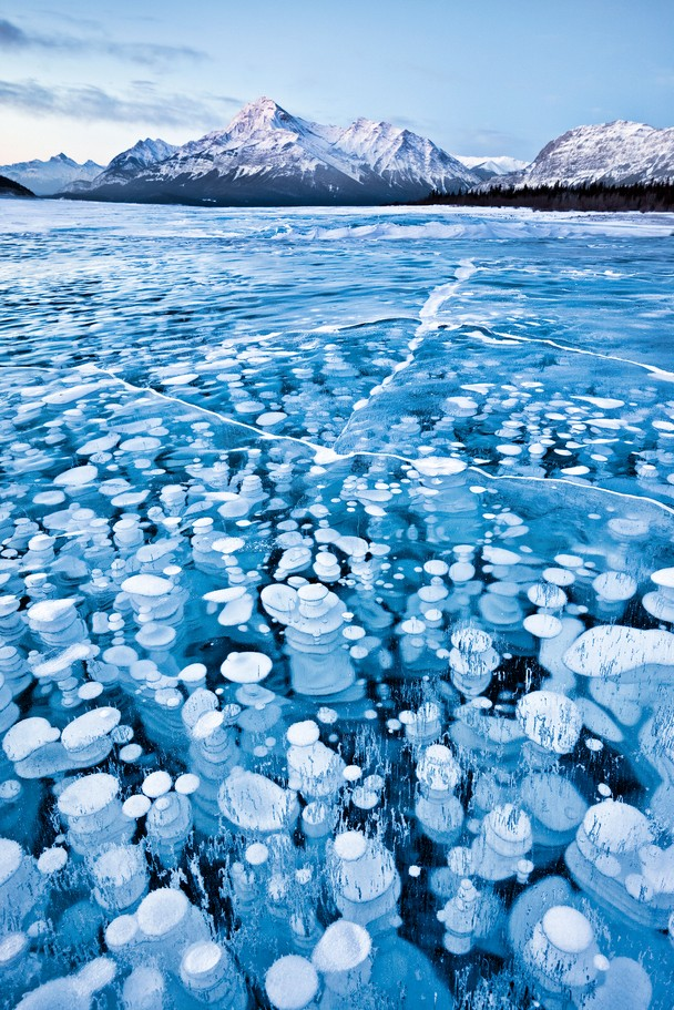 Frozen bubbles Funny Nature Foto