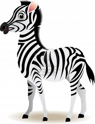 Funny Baby Zebra Graphic for fb Share