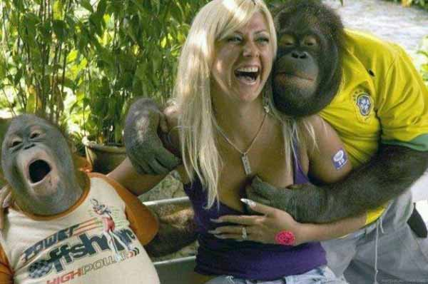 Funny Chimp with a beautiful Woman