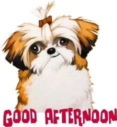 Good Afternoon Dog Picture for Orkut