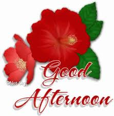 Good Afternoon Flower Graphic for Facebook Sharing