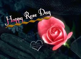Happy Rose Day Picture for Fb Share