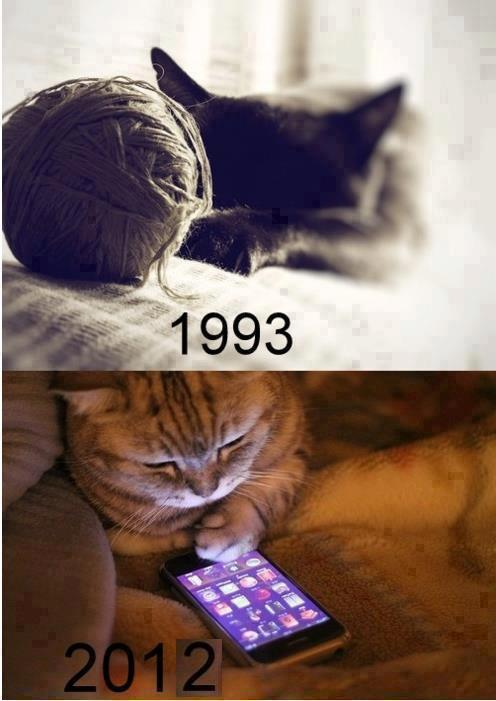 Funny Cat Picture How times have changed