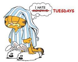 I hate Tuesdays