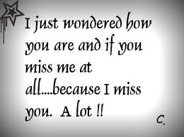I Just Wondered how you are and if you Miss me at all… Because I miss you A Lot !!