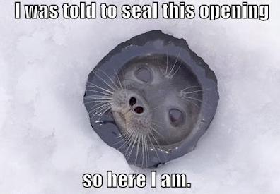 I was told to seal this opening Funny Animal Picture