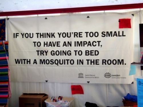 Funny Quote Picture If you think You're Too Small to have an Impect