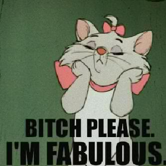 Bitch Please I am Fabulous Funny Cartoon Image