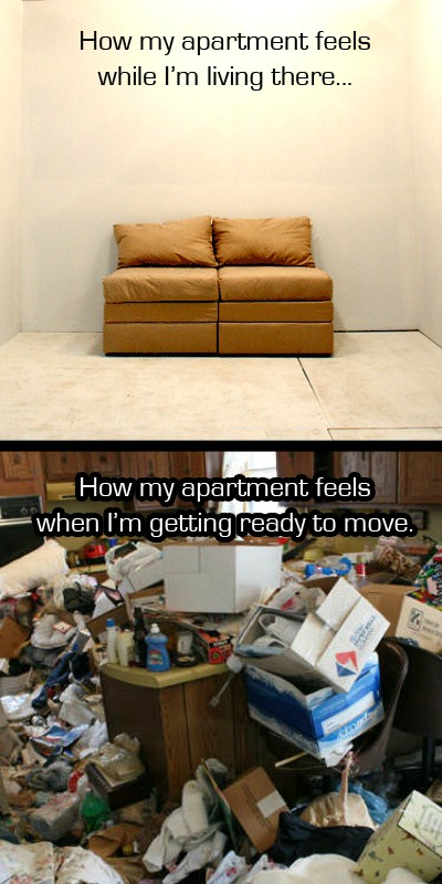I'm moving. Funny Picture