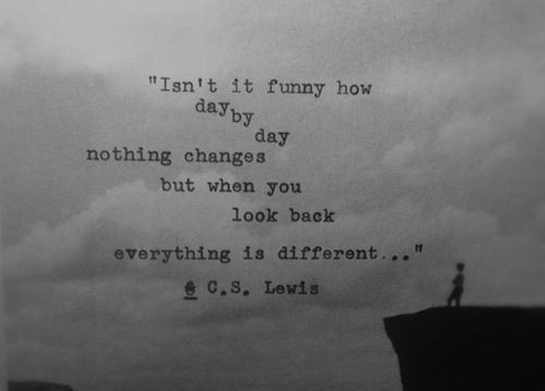 Isn't It Funny How Day by Day Funny Quote Picture