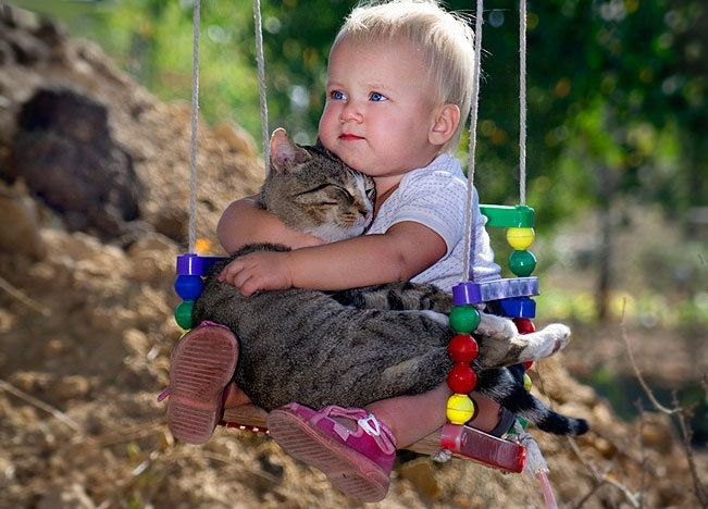 Just a baby holding a kitten. Funny Baby Picture