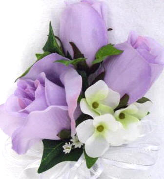 Lavender Roses Picture