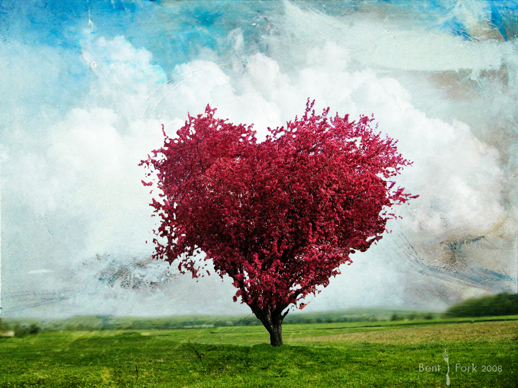 Love Heart Tree Picture