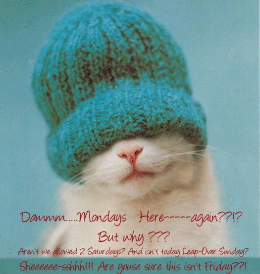 Mondays Here