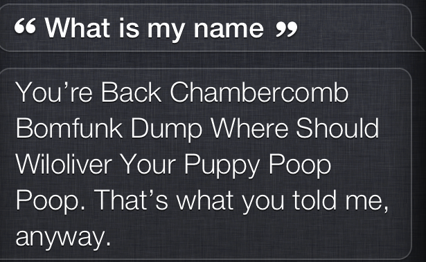 My new hobby is having Siri set my nickname by mumbling incoherently for several seconds.Funny Things Picture