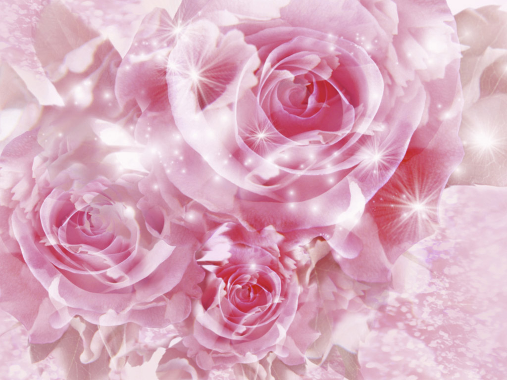Pink Magical Roses Picture