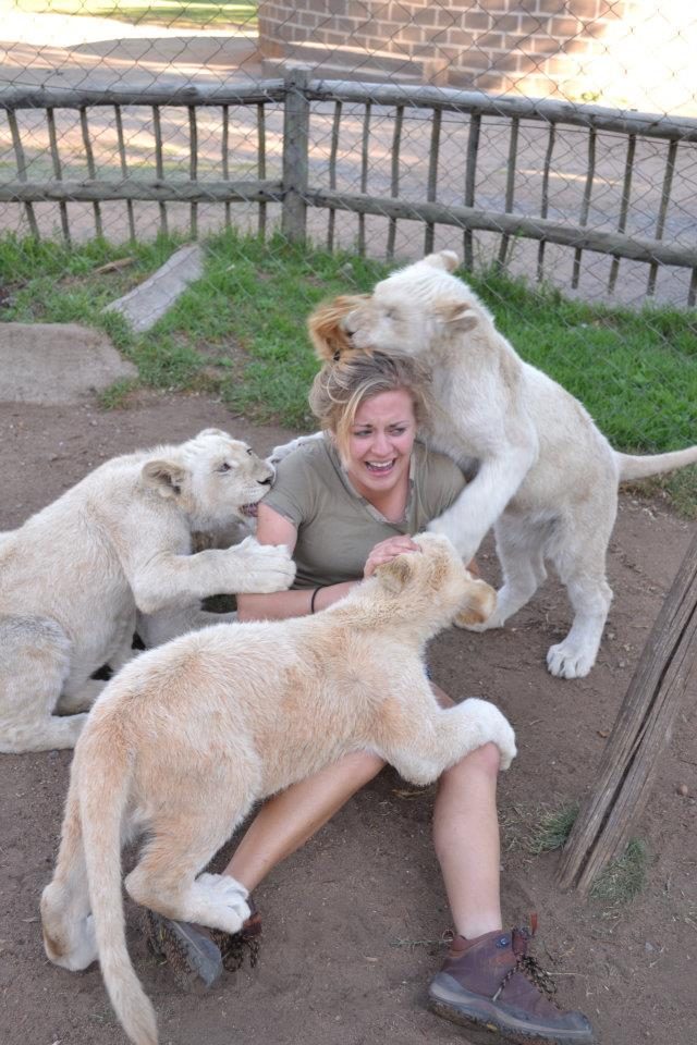 Play with the lion cubs they said, it will be fun they said! funny Women picture