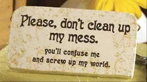 Please Dont Clean up my Mess