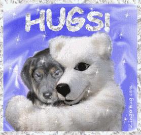 Funny Bear Hug Image