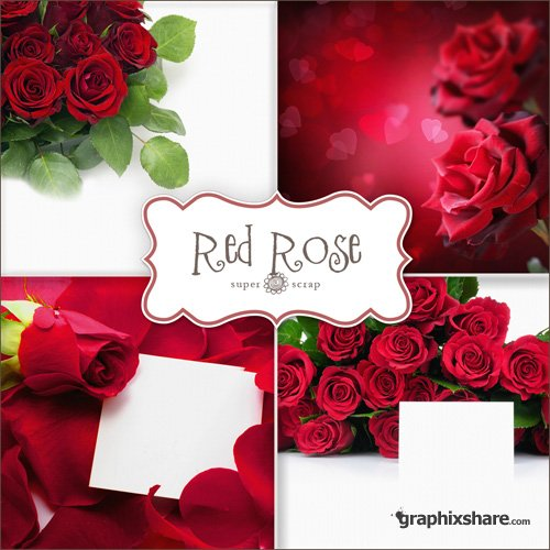 Red Rose Greetings
