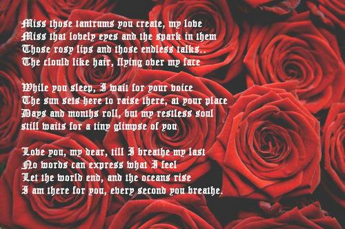 Red Rose Scrap for Orkut