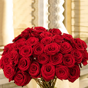Red Roses Bouquet Picture