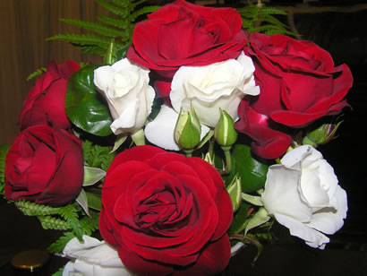 Red with White Roses Picture