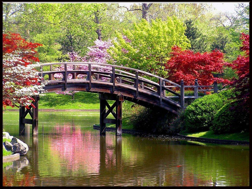 River on Spring