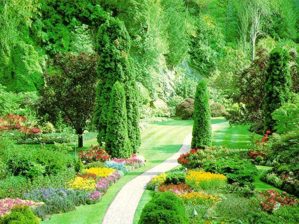 Spring Garden Picture