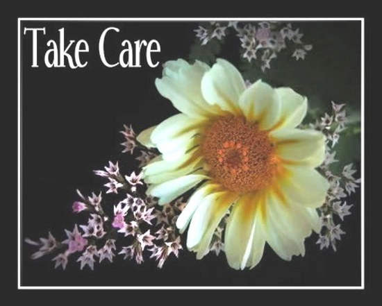 Take Care Flower Picture for Facebook Share