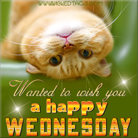 happy wednesday to you 