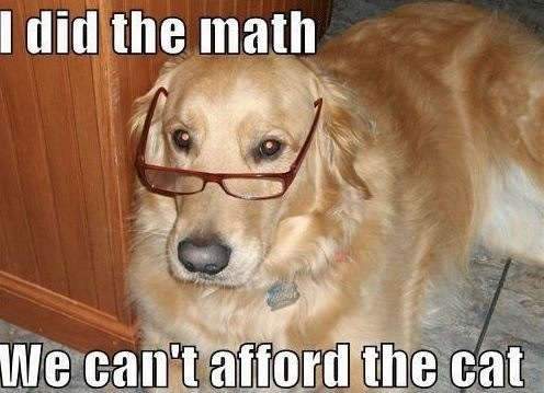 Well, since an educated gentleman said it.. Funny Dog with Spectacles Picture