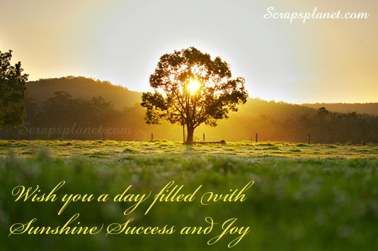 Wish you a Day Filled with Sunshine Success and Joy