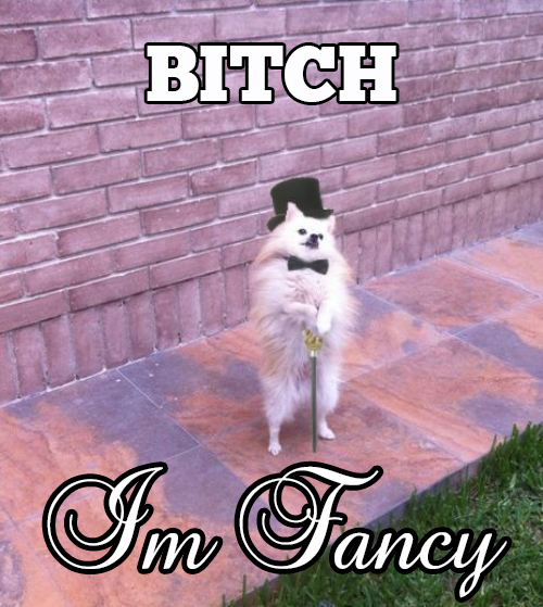 Bitch I am Fancy